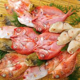 高級白身魚干物「百花繚乱」
